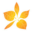 autumn leaves stylized orange leaves lying in a vector image