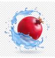 pomegranate in water splash fresh fruit realistic vector image