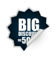 Big sales and special offers shopping vector image