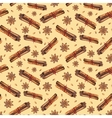 Seamless pattern with star anise and cinnamon vector image