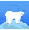 Polar Bear Ursus Maritimus on Piece of Ice vector image