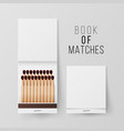 book of matches top view closed opened vector image