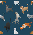 seamless pattern of isometric cartoon cats vector image