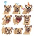 Little Pet Pug Dog Puppy With Collar Collection Of vector image