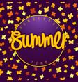 summer season banner design vector image
