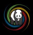 fat panda standing cartoon logo vector image