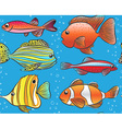 Seamless blue pattern with color fishes vector image