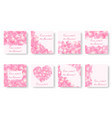set of square backgrounds with pink petals vector image