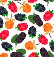 Berries Pattern vector image