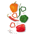 pepper and chillies vector image