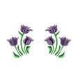 Purple tulips set vector image