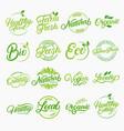 set of organic local fresh lettering logos vector image