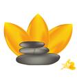 spa stones with frangipani vector image