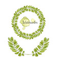 watercolor acacia leaves decoration round frame vector image