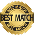 Best match golden label vector image