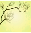 Spring background with magnolia flowers vector image