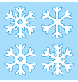 four snowflakes vector image