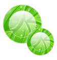 Eco friendly icon for web design leaves texture vector image