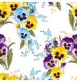 Seamless varicolored pansies vector image