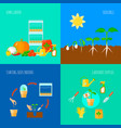 seedling concept icons set vector image