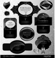 collection vintage and retro labels vector image