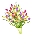 Beautiful Fresh Tulip Bouquet on White Background vector image