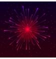 Celebratory Fireworks vector image