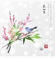 sakura in blossom bamboo branch and little bird vector image