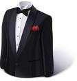 Tuxedo and bow Stylish suit vector image