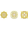 lace gold symbols vector image
