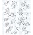 Set of autumn leaves chestnuts acorns and viburnum vector image