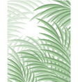 Exotic background with palm leaves for design in vector image vector image