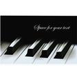 Realistic piano keys vector image