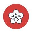 japan flower sakura icon isolated on white vector image