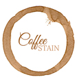 Coffee Cup Stain Background vector image