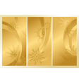 Golden frosty pattern vector image