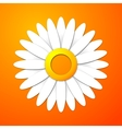 Applique cut flower with leaves and shadows vector image