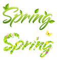 2 spring words vector image