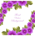 Beautiful mallow flowers with leaves vector image
