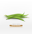 bunch of green beans isolated on white background vector image