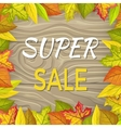 Super Sale Fall Banner Isolated Wooden Background vector image
