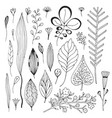 leaves hand drawn collection cute with sketches vector image