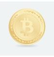 Bitcoin Gold coin with Bitcoin symbol vector image vector image