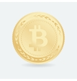 Bitcoin Gold coin with Bitcoin symbol vector image