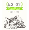 Organic farm food poster healthy sticker drawn vector image