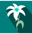 White lily icon flat style vector image