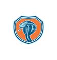 Cobra Viper Snake Head Shield Retro vector image vector image