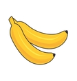 banana fruit food vector image