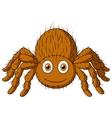 Cute tarantula spider cartoon vector image