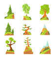 coniferous and deciduous trees set natural vector image